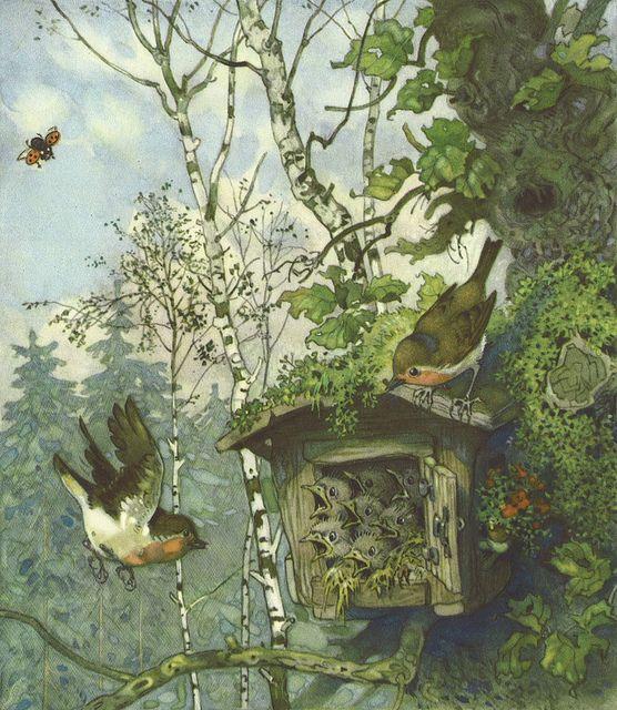 451 best images about livres d 39 enfant children 39 s for Baum garten