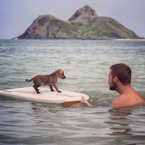 Paulita aprendió como surfear cuando ella era muy joven.  Ella surfea todos los días.