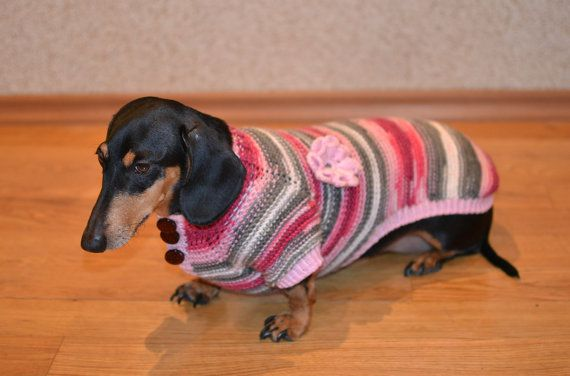 Dog Clothes dachshund Sweater Warm Hand Knitting by Puppy1Love, $36.00