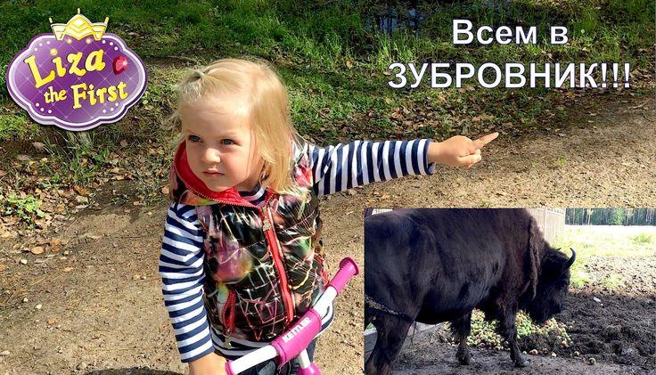Зубровник в Токсово. Лиза Где. Серия 13