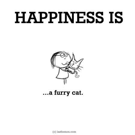 http://lastlemon.com/happiness/ha0119/ HAPPINESS IS...a furry cat.
