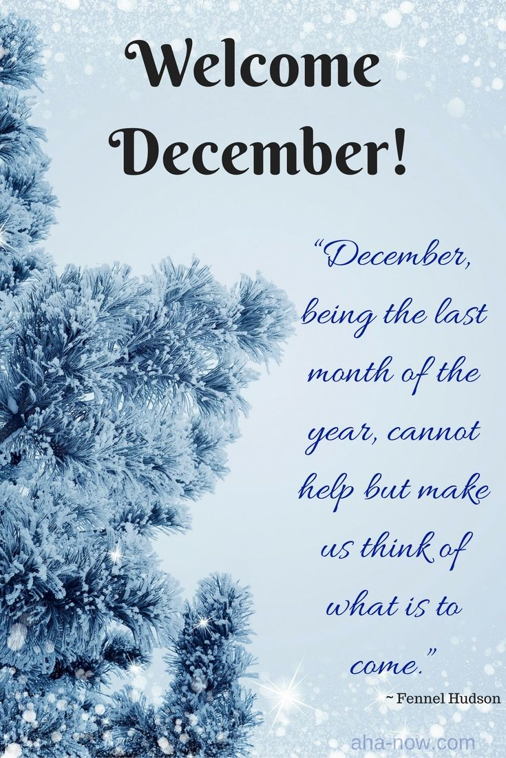 "Happy December everyone! ""December, being the last month of the year, cannot help but make us think of what is to come."" ~ Fennel Hudson"