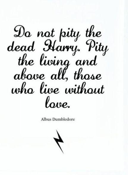 dumbledore wisdom.