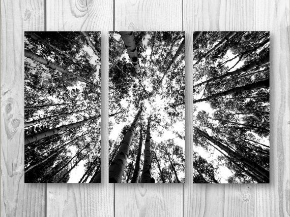 Three Separate Canvas Wall print Black and white by ssstudiosshop, $150.00