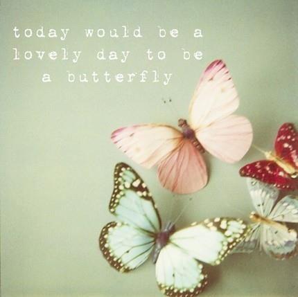 Astăzi ar fi o zi frumoasă pentru a fi un fluture!