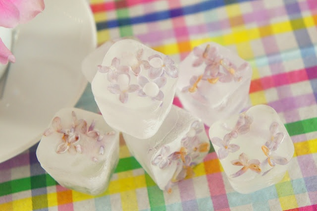 Icecubes with flowers