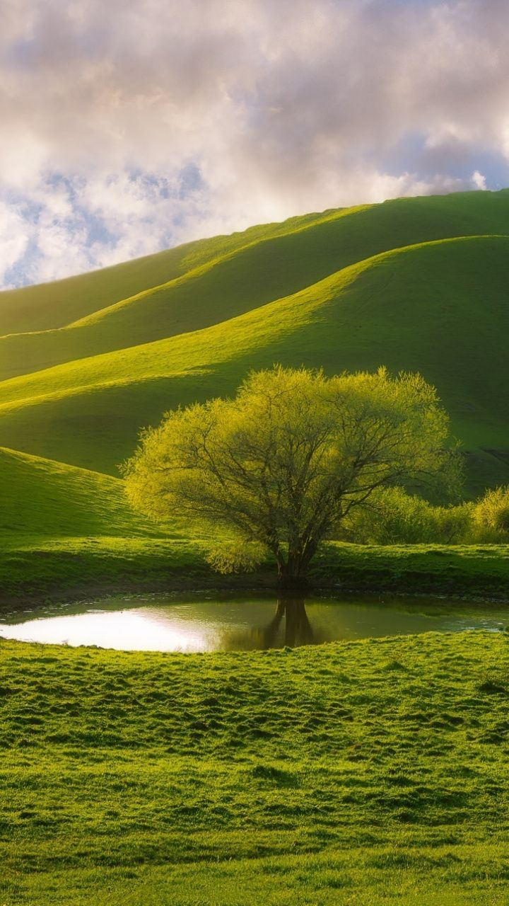 Hill Lake Tree Landscape Green 720x1280 Wallpaper Beautiful Scenery Pictures Mountain Landscape Photography Natural Scenery Green android image hd wallpaper
