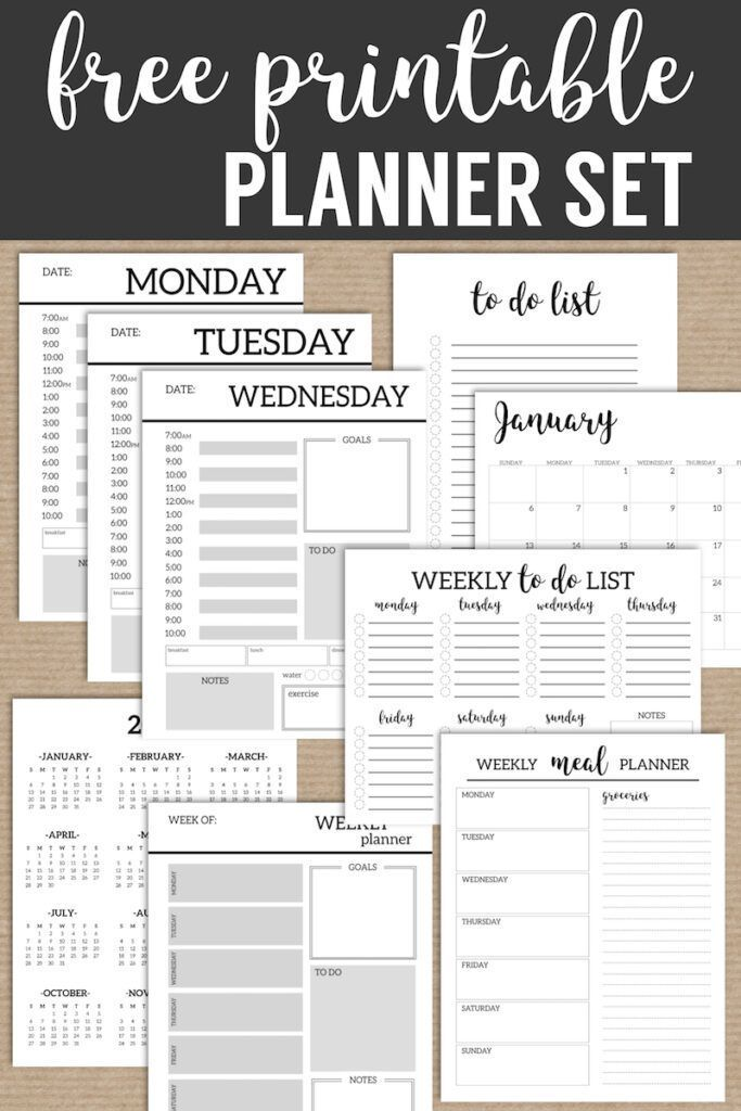 Monthly Planner Template Printable Planner Pages Paper Trail Design Monthly Planner Template Printable Planner Pages Printable Day Planner