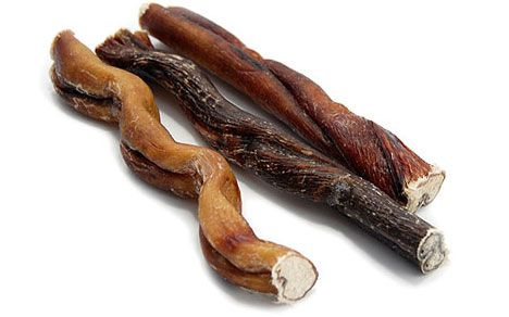 Bully Sticks for dogs (also known as bull pizzle) has many benefits for your fine furry friend, but there are some things you need to know before giving...