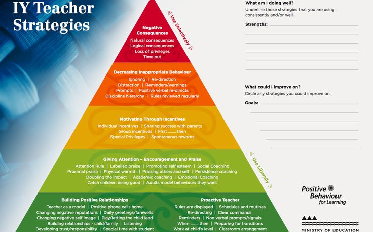 The TKI website supports teachers to make positive changes to support the behaviour and learning of their students.  Follow the link: http://pb4l.tki.org.nz/Media/Files/IYT-Strategies-Pyramid-Worksheets