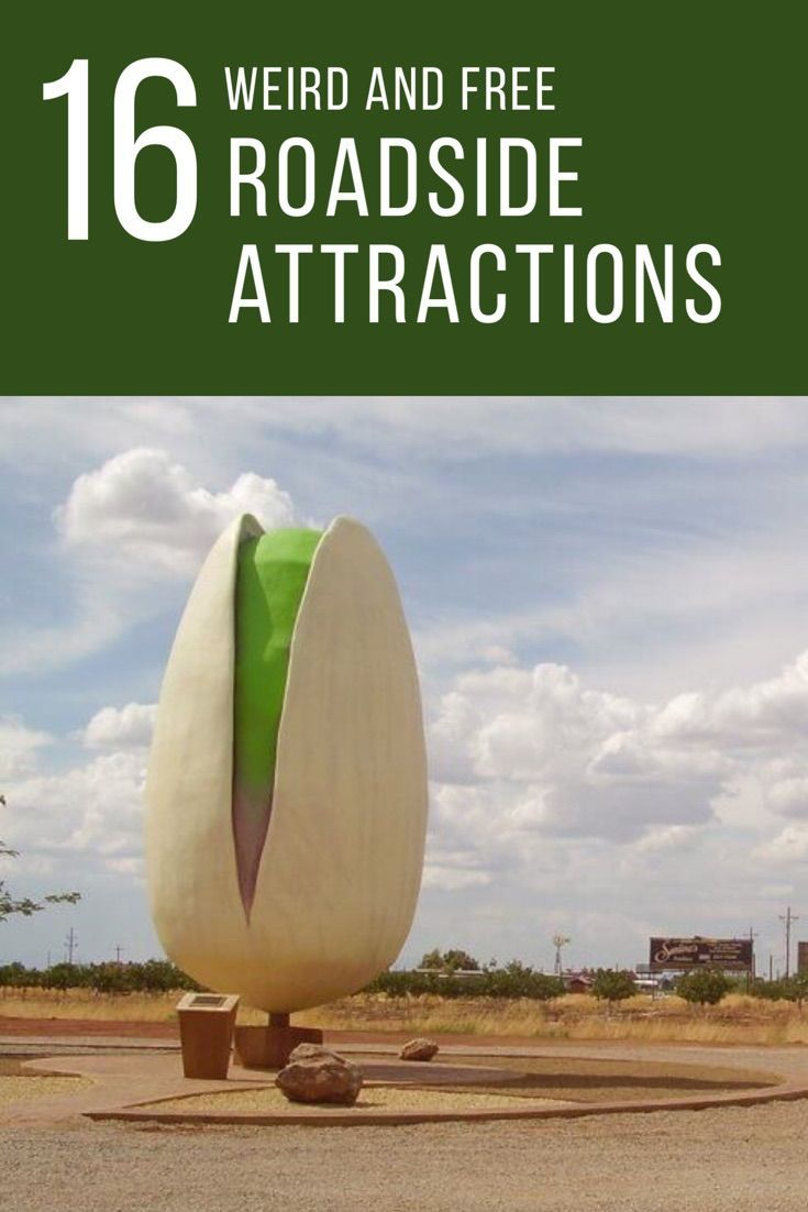 Check out these weird roadside attractions that are well worth a detour.
