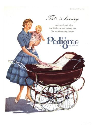 Babies Pedigree Prams (uk 1950) I was in one of theses then had my own.
