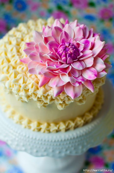 Chrysanthemums and dahlias from sugar mastic cake decorating (5) (465x700, 225Kb)