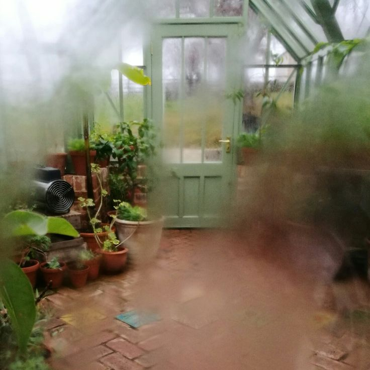 Looking through the rain streaked windows of a greenhouse into the potted promise of summer. At The Pig, Brockenhurst. #greenhouse #old #vintage #art #design #rain #plants #pots #moody #promise #rain #artsy #flowers #conservatory #architecture #beautiful #oldfashioned #traditional #garden #gardening #door #glasshouse