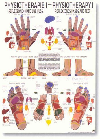 Acupressure points in hands and feet