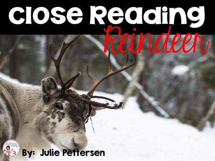 FREE. This product contains 3 differentiated close reading passages on reindeer (appropriate for Kindergarten, first grade, second grade, and third grade).Vocabulary word cards, vocabulary picture cards, vocabulary definitions and 3 activities are included (sticky note comprehension, read and respond, and a vocabulary page).