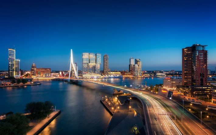 Rotterdam, Erasmusbrug, Cable-stayed bridge, river Maas, Netherlands, Holland