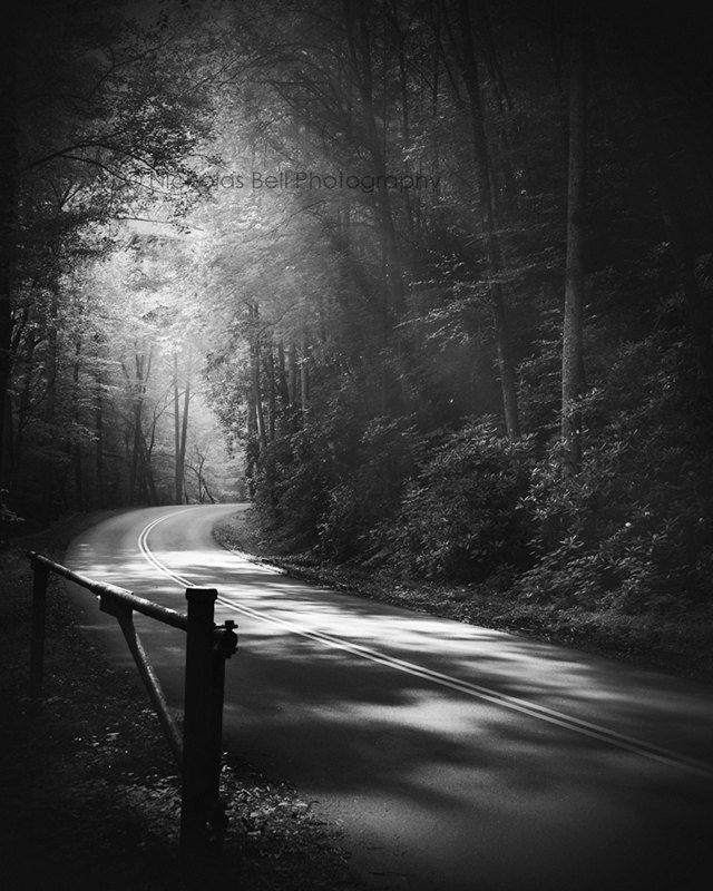 Black and white landscape photography smoky mountains landscape print black and white photography road photography ethereal lane no 2