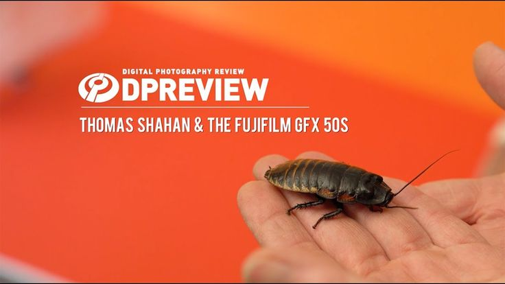 Thomas Shahan is a macro photographer, who specializes in extreme closeup shots of insects and spiders. We joined him on a shoot, with the medium format Fuji...