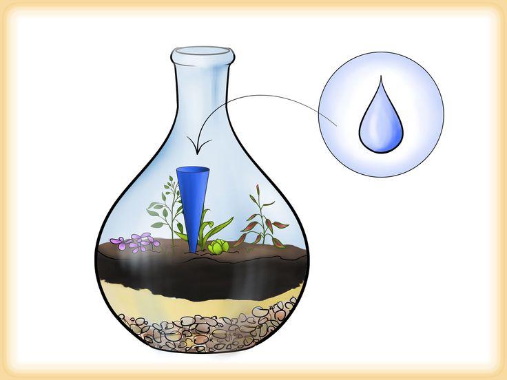 Eine alte Flasche kann man - als eine Art von Recycling - in ein Gewächshaus verwandeln. Ist vor allem ideal für Leute, die den ganzen Winter über die Gartenarbeit vermissen. Eine Flasche aussuchen. Es kann natürlich auch ein anderes Gla...