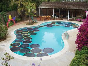 DIY Pool warming lily pads - hula hoops and black polyethylene film warms the water by transmitting the sun's heat