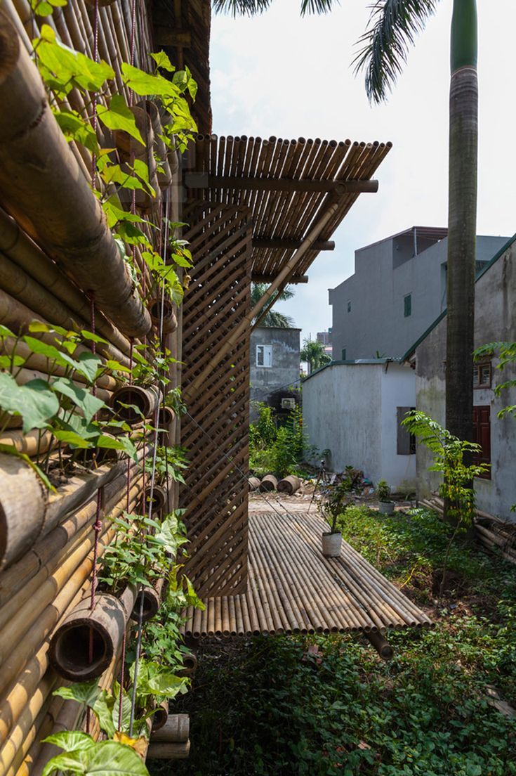 flood resistant blooming bamboo home by H&P architects / With Vertical Garden