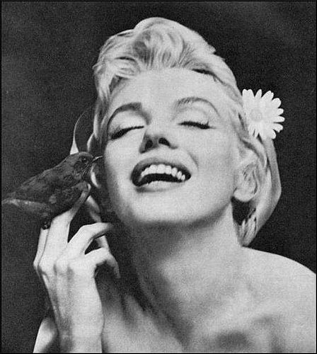 MM by Cecil BeatonMarilyn Monroe, Cecil Beaton, Little Birds, White Fashion, Rocks Stars, Marilynmonroe, Photos Shoots, Portraits, Photos Session