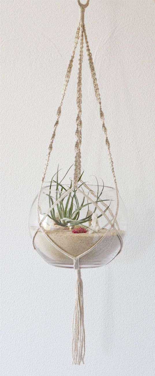 Interview: RAW ~ macrame beach terrarium design