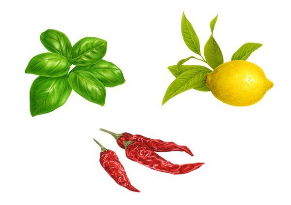 Botanical Illustrations by Irene Laschi, via Behance