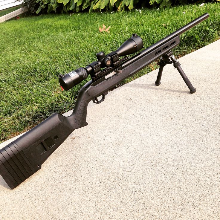 Rougher 10/22 in Magpul X-22 Stock