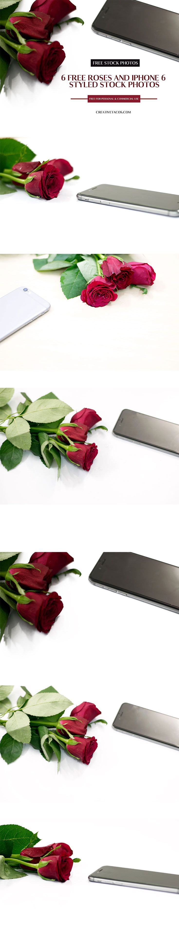 Free Roses and #iPhone 6 Styled High-Resolution #Stock #Photographs are #free for your personal and commercial use. These #photos can be used on many projects. via @creativetacos