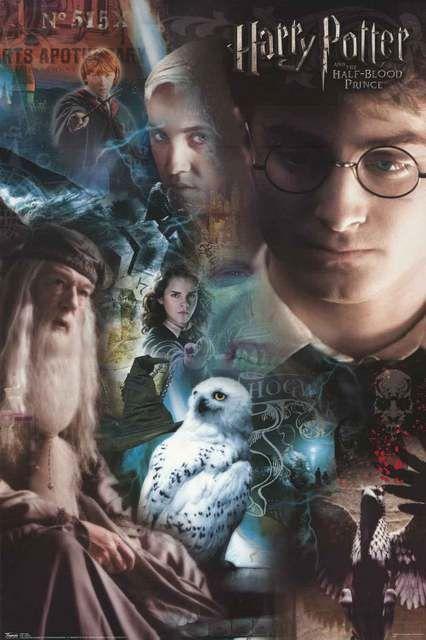 Harry Potter Half-Blood Prince Cast 2009 Movie Poster 22x34