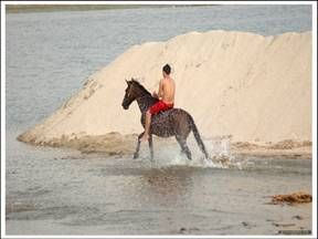 Horse Riding in Puerto Vallarta, Mexico