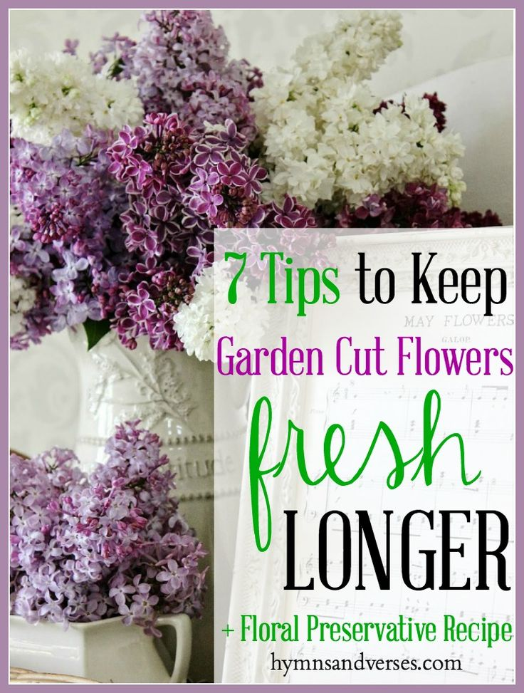 keep your garden cut flowers fresh longer floral preservative recipe
