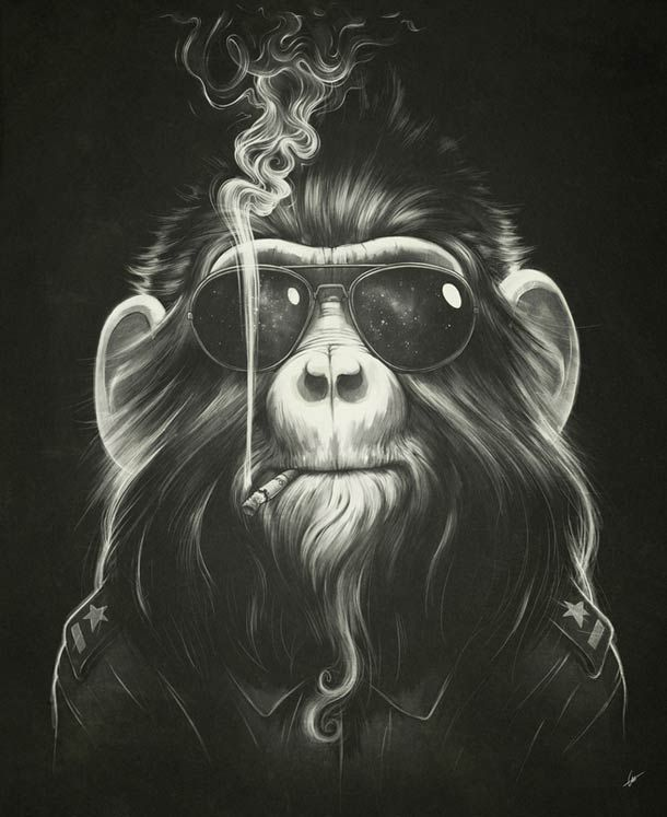 SMOKE 'EM IF YOU GOT 'EM PAR LUKAS BREZAK