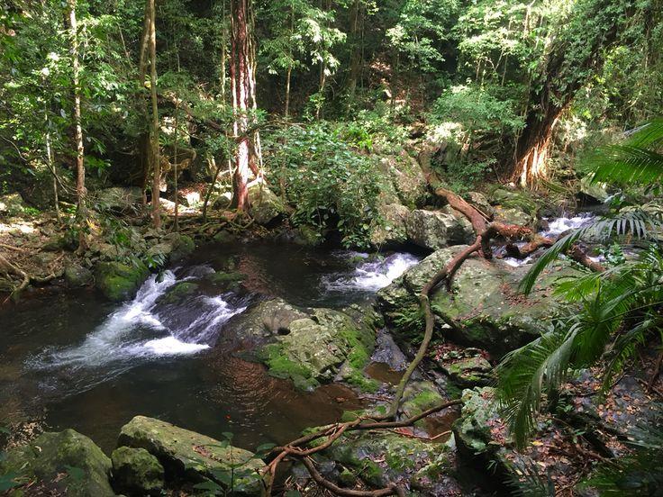 Stoney Creek - photo taken by me - May 2016