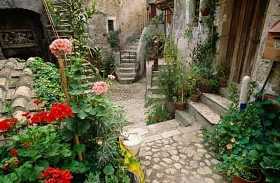 27 best images about love courtyard on pinterest for Tuscan courtyard landscaping