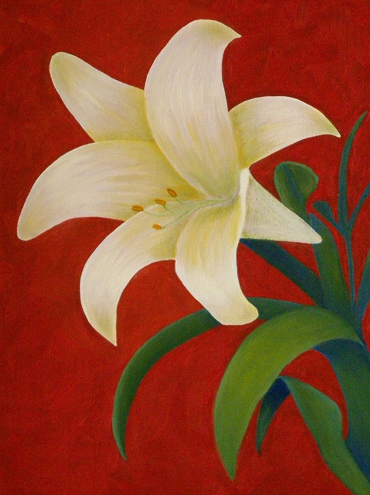 How to paint a lily - step by step with photos