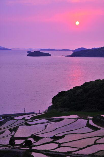 Terraced Rice-Fields, Nagasaki, Japan 玄海灘に沈む夕日と土谷棚田