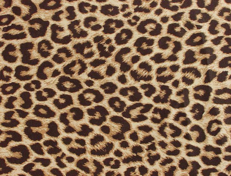 patterns leopard - Google Search