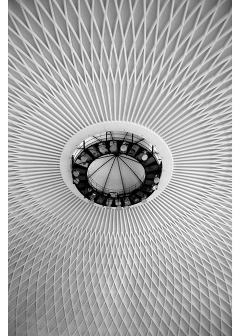Ceiling of the Palazzetto dello Sport, otherwise known as the basketball stadium for the 1960 Olympics, designed by Pier Luigi Nervi.