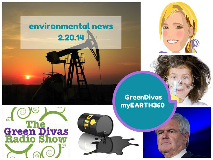 Green Divas myEARTH360 Report: Environmental News Update 2.20.14