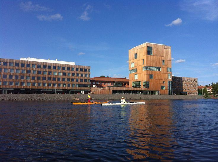 Umeälven Umeå. Kayaklife in June. Outside Arts Campus.