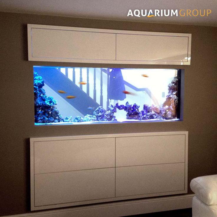 Through Wall Aquarium With Contemporary Hi Gloss White