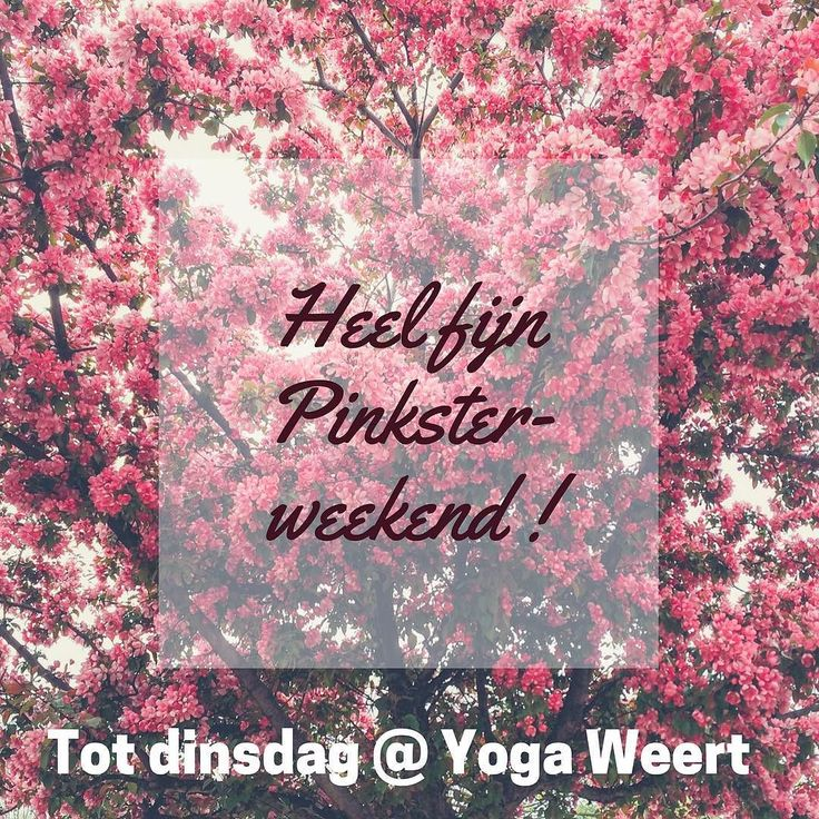 Maak er een mooi lang weekend van. Wij zien je vanaf dinsdag weer graag op je #yogamat ! #yogaweert #yoga #weert #wieert #weertdegekste #limburg