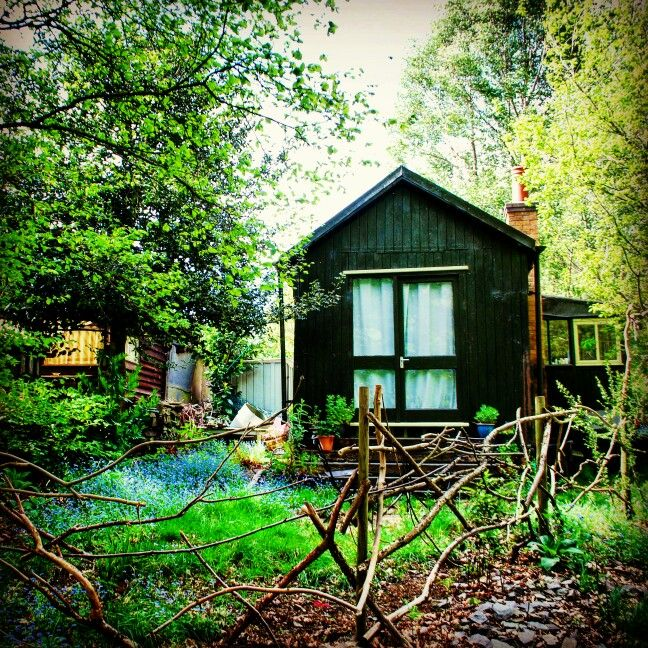 Cabin in the woods. Swithland woods.