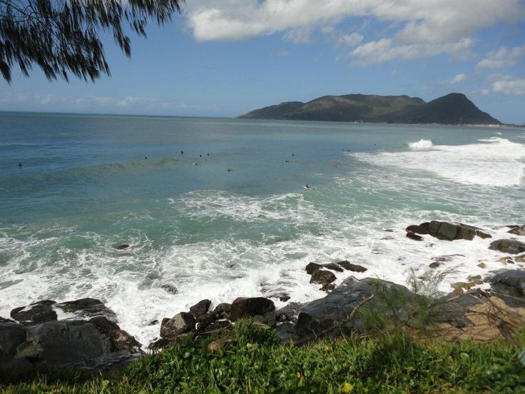 Temporada de Observação de Baleias Franca em Florianópolis