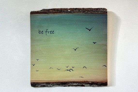 Inspirational, Decorative Photo Printed on Natural Edge Wood - Be Free - Wood Sign with Saying - Photo on Wood - Wood Wall Art
