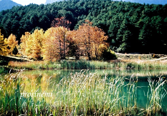 Autumn colours  Photo of a lake by prosinemi on Etsy, €15.00