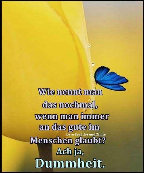 Pin Von Silke Adler Auf Sprüche Und Bilder Sprüche Zitate